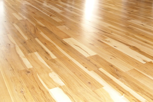 HARDWOOD FLOOR - MAPLE